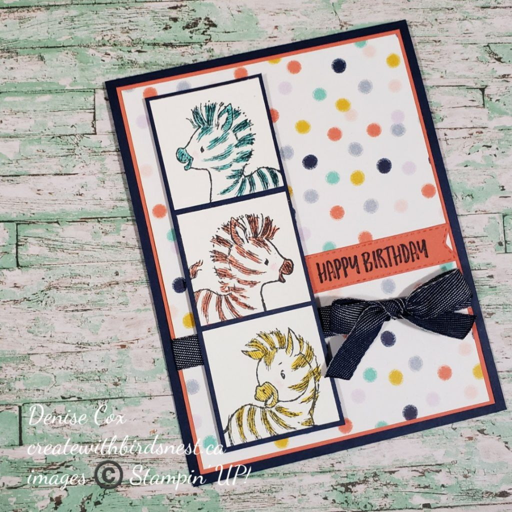 Zany Zebra Birthday Card